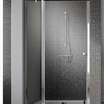 Душевая дверь EOS II DWJ на длину 1100-1200 мм