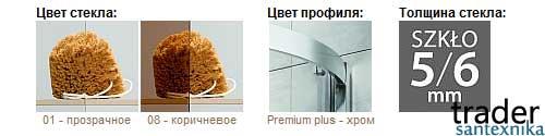 Душевая дверь Premium Plus DWJ